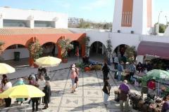 Albufeira-Algarve-Villas-da-Correeira-DS-10-Mercado-Municipal-dos-Calicos