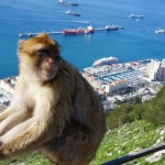 Gibraltar 3.2