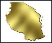 правительство Танзании