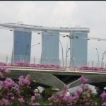 Бизнес — иммиграция в Сингапур. Сколько стоит переехать в Сингапур?