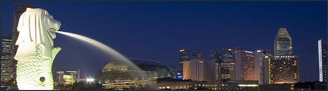 крупный бизнес Сингапура