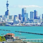 Сквозь тернии к счету в Новозеландском банке. Хитрости и сложности, и к чему быть готовым при открытии счета в Новой Зеландии дистанционно.