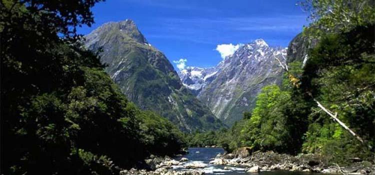 трасты в Новой Зеландии