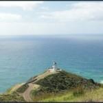 Можно ли купить резидентство Новой Зеландии?