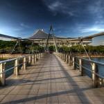 Гид по регистрации сингапурских компаний