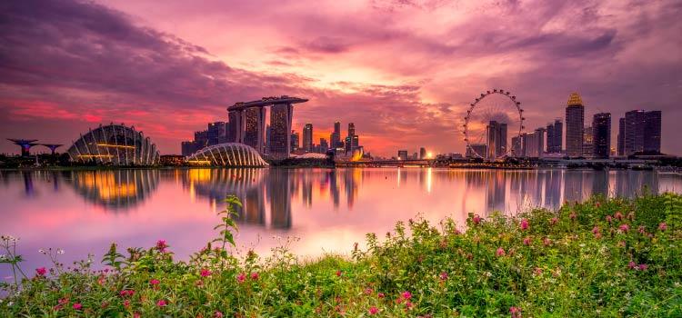 вопрос о сингапурских компаниях