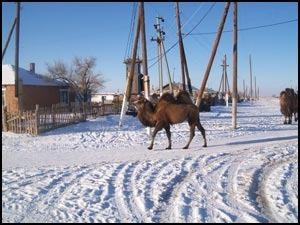 доходы юридических лиц нерезидентов в Казахстане