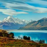 Новозеландское партнерство с ограниченной ответственностью и его неограниченные возможности