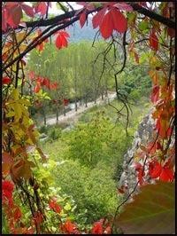 разрешение на временное проживание в Болгарии