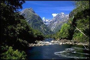 регистратор Новой Зеландии