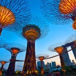 Как получить лицензию на финансовые услуги в Сингапуре?