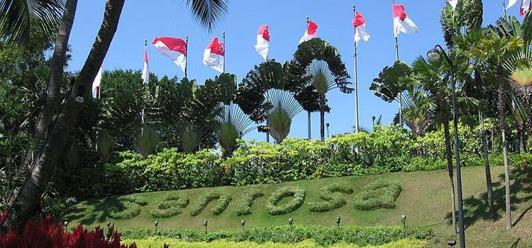 Получение гражданства сингапура дубай квартиры и домов