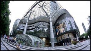 начало собственного бизнеса в Сингапуре