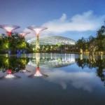 Отказ от гражданства Сингапура
