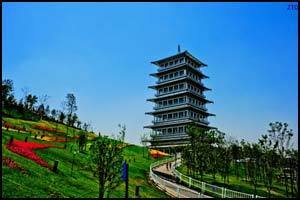 Формы организации бизнеса в Китае