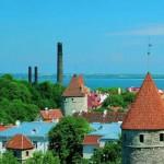 Готовая эстонская компания OÜ с латвийским VAT номером