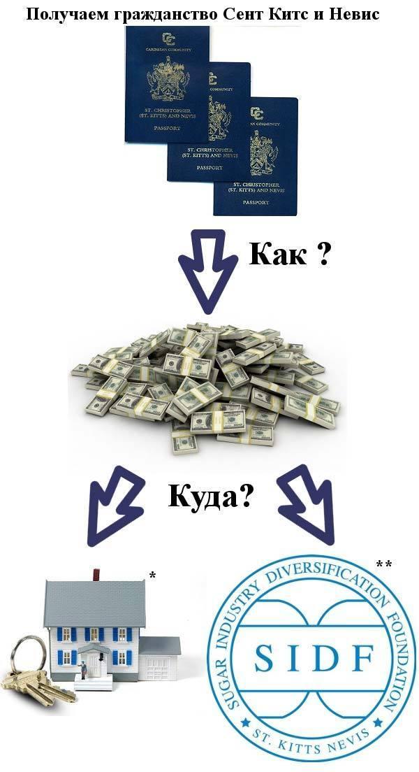 схема гражданства Невиса