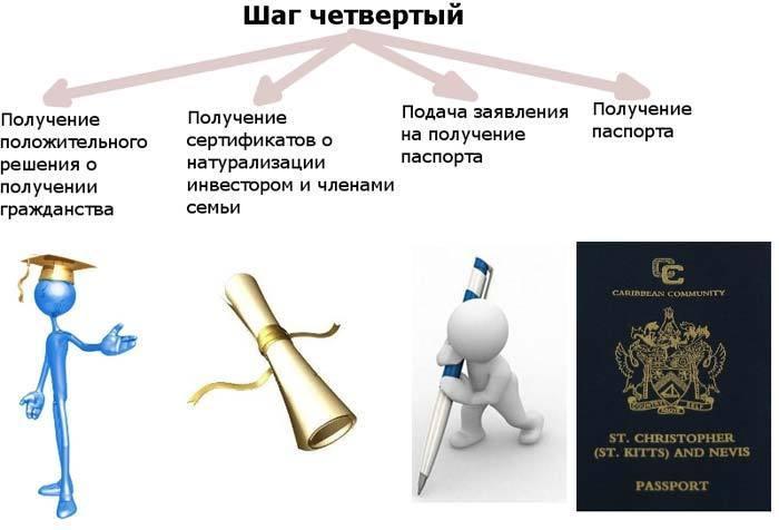 шаг 4 гражданство Невис