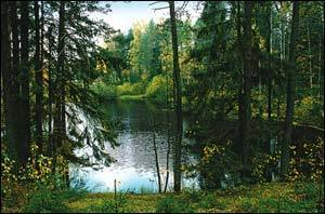 ВНЖ Латвии