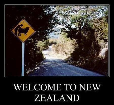 правила злости в новой Зеландии