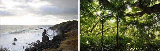 природа Невиса