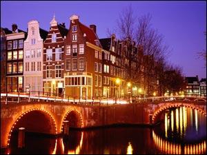 Почему Нидерланды хороши для бизнеса