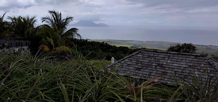 о гражданстве за инвестиции Сент-Китс и Невис