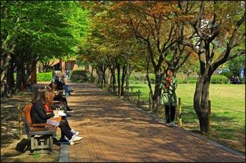 ВНЖ Южной Кореи за инвестиции
