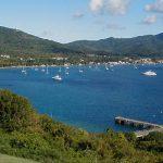 Получаем второе гражданство Доминика и отправляемся на Фестиваль дайвинга