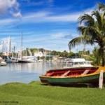 Кто контролирует программу гражданства за инвестиции Гренады?
