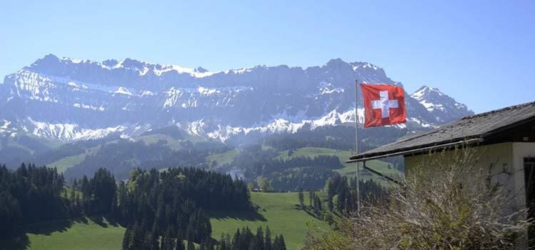 Учреждение S.A./ A.G. в Швейцарии