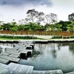 Лучшие парки для прогулок с детьми в Сингапуре