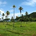 Гражданство Доминики за инвестиции в проект Cabrits Resort Kempinski