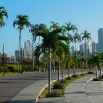 Частные Фонды и Трасты в Панаме. Инструкция по Применению