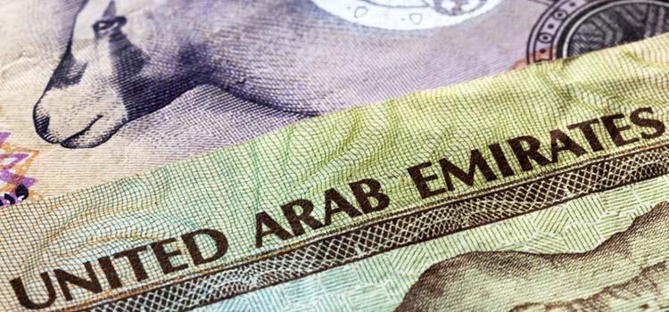 Типы компаний в ОАЭ и формы владения бизнесом в ОАЭ