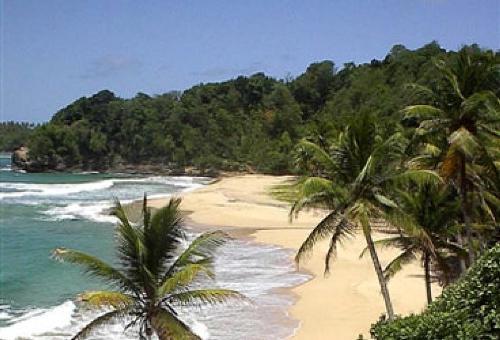 125-Dominica_-Turtle_Bay_0