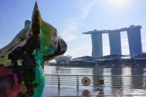 Налоговое соглашение между Сингапуром и ОАЭ обновлено