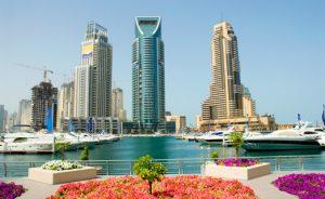 Особенности учреждения бизнеса в ОАЭ
