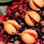 Второе гражданство Гренады за инвестиции и мускатный орех – в чем связь?
