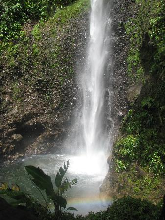 исследуем оффшор Доминику – поход на Middleham Falls из Laudat