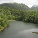 Получаем второе гражданство и исследуем национальные парки Доминики