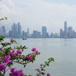 Панамский фонд в тандеме с Невис LLC заменит акции на предъявителя