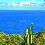 Гражданство за инвестиции Доминики и авантюрный поход по девятому сегменту Waitukubuli National Trail