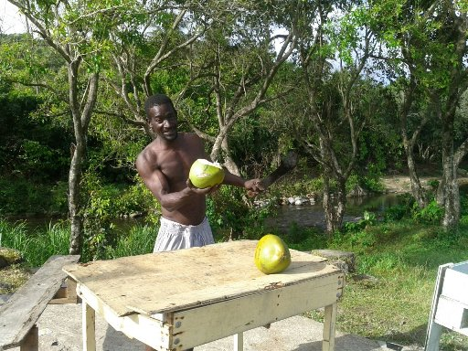 обзор Доминики