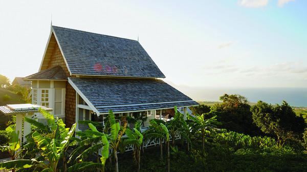 ферма Сент-Китс и Невис
