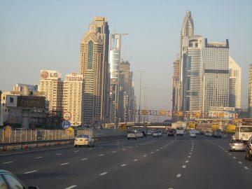 Что может привести к утрате гражданства ОАЭ