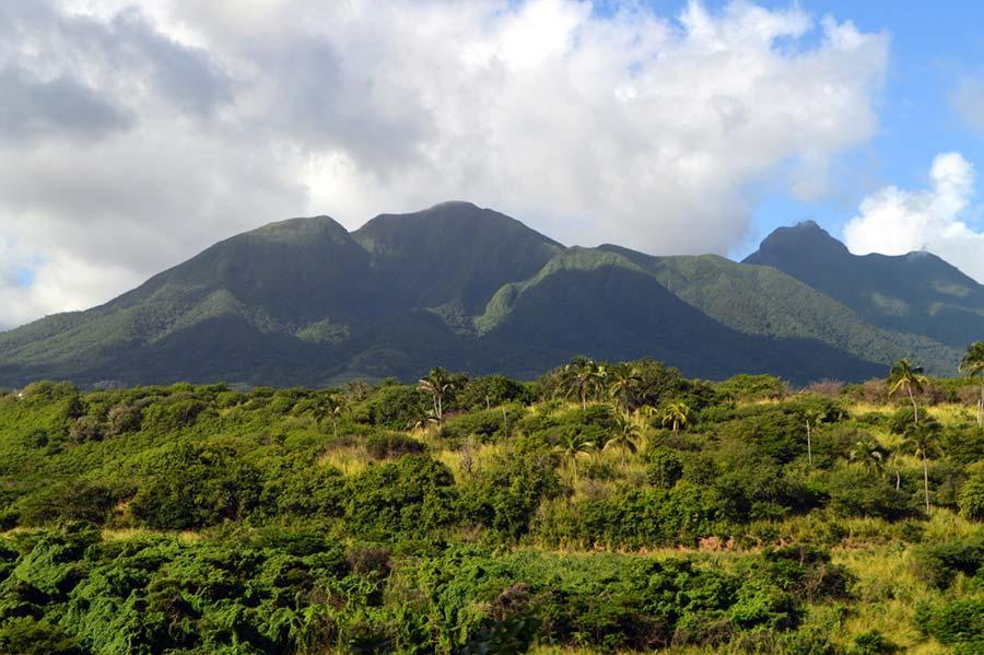 тропический лес Сент-Китс и Невис