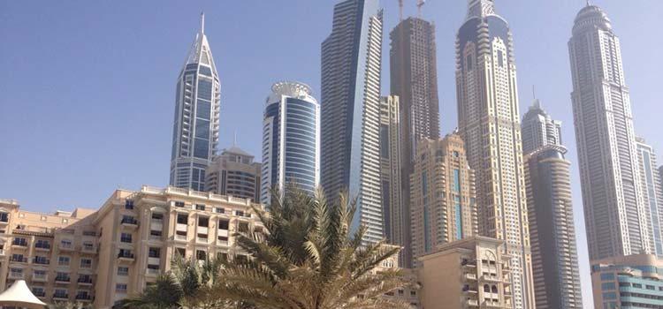 компании в ОАЭ
