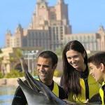 Иммигрируете в ОАЭ всей семьей? 10 особенностей переезда с детьми в Абу-Даби