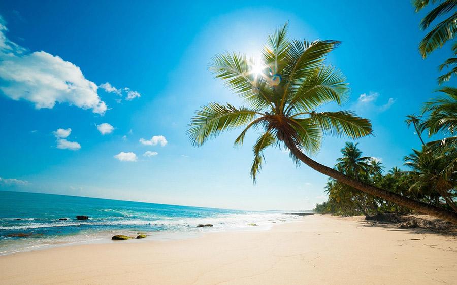 преимущества карибских паспортов